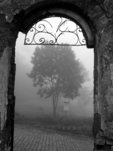 foggy day arch